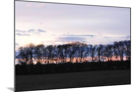 Winter Sunset 2-Alan Hausenflock-Mounted Photographic Print