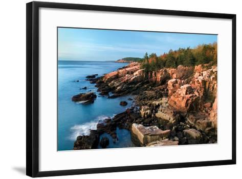 Acadia Coastline-Larry Malvin-Framed Art Print
