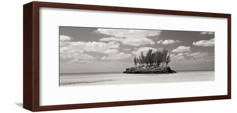 Gaulding Cay Conch BW Panel-Larry Malvin-Framed Art Print