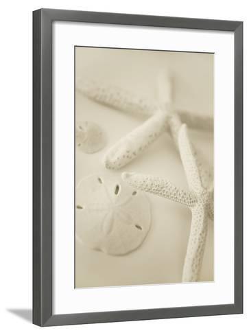 Ocean Treasures VI-Karyn Millet-Framed Art Print