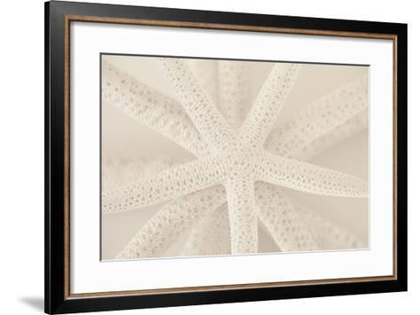 Ocean Treasures VII-Karyn Millet-Framed Art Print
