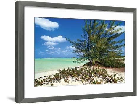 Sand Dollar Beach-Larry Malvin-Framed Art Print