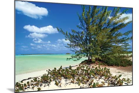 Sand Dollar Beach-Larry Malvin-Mounted Photographic Print