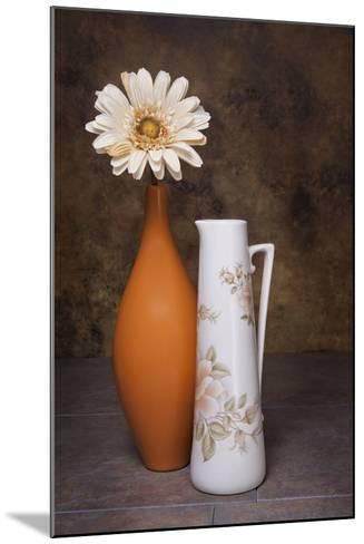 Orange Vase with Pitcher I-C^ McNemar-Mounted Photographic Print