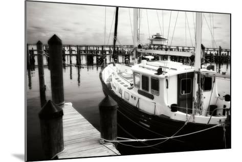 Cambridge Docks I-Alan Hausenflock-Mounted Photographic Print