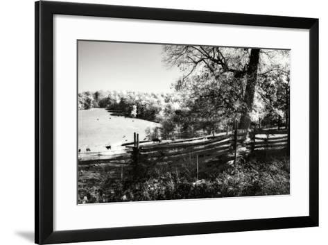Autumn Pastures II-Alan Hausenflock-Framed Art Print
