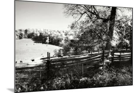 Autumn Pastures II-Alan Hausenflock-Mounted Photographic Print