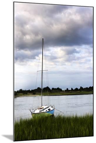 Stormy Sunrise on Taylor's Creek 1-Alan Hausenflock-Mounted Photographic Print