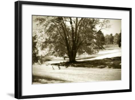 Geese at the Pond I-Alan Hausenflock-Framed Art Print