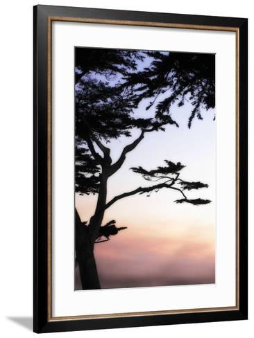 Cypress Silhouette 4-Alan Hausenflock-Framed Art Print
