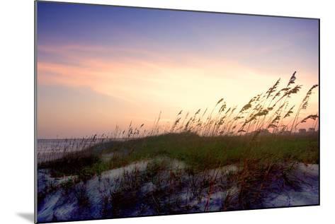 Rosey Sunset II-Alan Hausenflock-Mounted Photographic Print