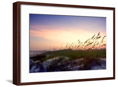 Rosey Sunset II-Alan Hausenflock-Framed Art Print