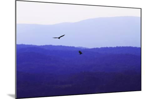 Blue Ridge III-Alan Hausenflock-Mounted Photographic Print