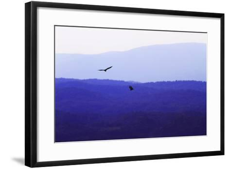 Blue Ridge III-Alan Hausenflock-Framed Art Print