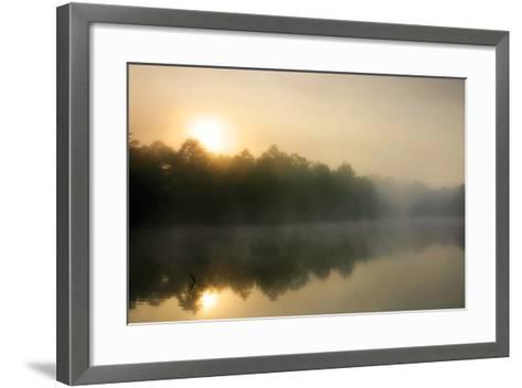 Fog on the Mattaponi 3-Alan Hausenflock-Framed Art Print