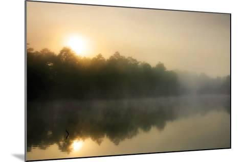 Fog on the Mattaponi 3-Alan Hausenflock-Mounted Photographic Print
