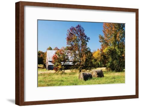 Autumn Scene I-Alan Hausenflock-Framed Art Print