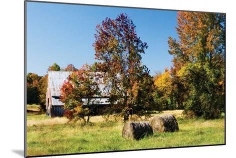 Autumn Scene I-Alan Hausenflock-Mounted Photographic Print