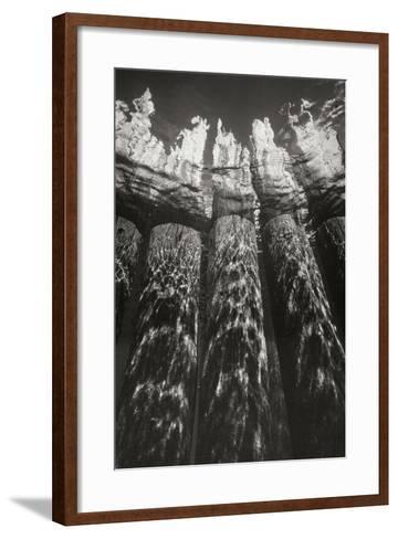 Pier Pilings 7-Lee Peterson-Framed Art Print