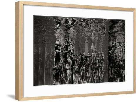Pier Pilings 2-Lee Peterson-Framed Art Print