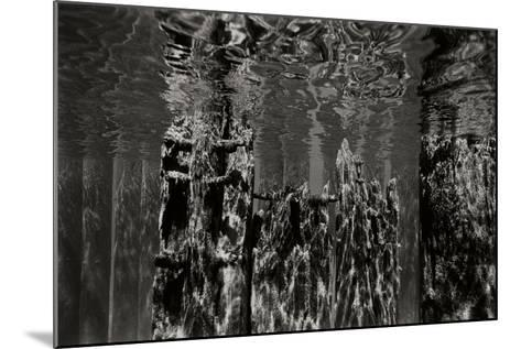 Pier Pilings 2-Lee Peterson-Mounted Photographic Print