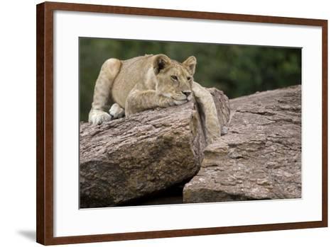 Lounging-Susann Parker-Framed Art Print