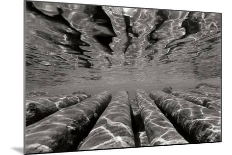 Pier Pilings 3-Lee Peterson-Mounted Photographic Print