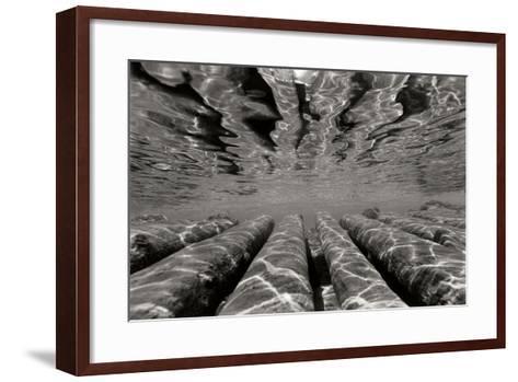 Pier Pilings 3-Lee Peterson-Framed Art Print
