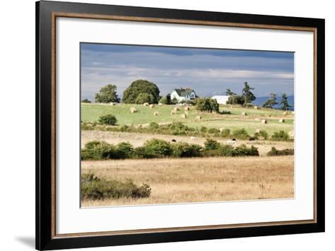 Hay Rolls I-Dana Styber-Framed Art Print