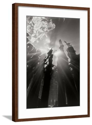 Pier Pilings 6-Lee Peterson-Framed Art Print