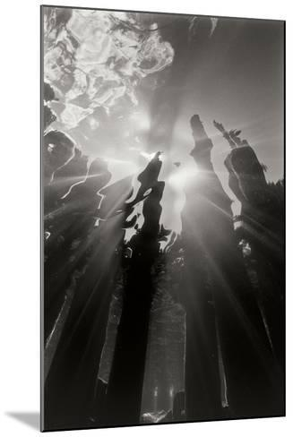 Pier Pilings 6-Lee Peterson-Mounted Photographic Print
