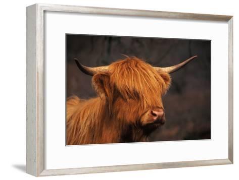 Symbolic of Scotland-Susann Parker-Framed Art Print