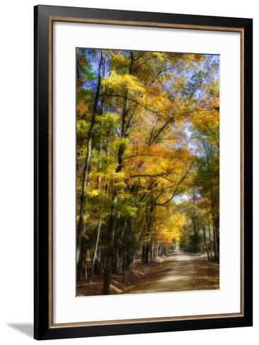 Goose Pond Lane IV-Alan Hausenflock-Framed Art Print