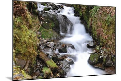Stream Falls VII-Logan Thomas-Mounted Photographic Print
