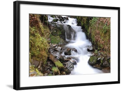 Stream Falls VII-Logan Thomas-Framed Art Print