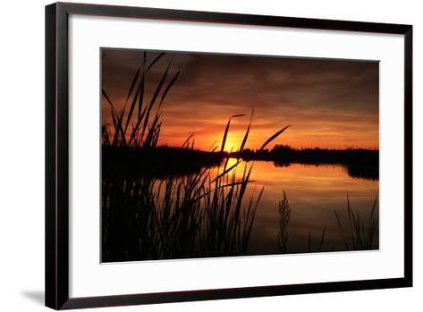 Sunset III-Beth Wold-Framed Art Print