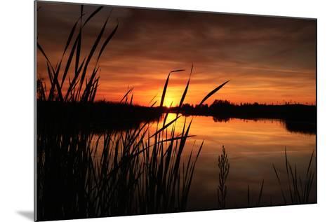 Sunset III-Beth Wold-Mounted Photographic Print