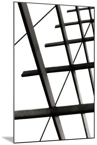 Steel Lattice II-Alan Hausenflock-Mounted Photographic Print