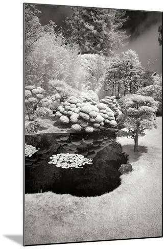 San Francisco Garden III-George Johnson-Mounted Photographic Print