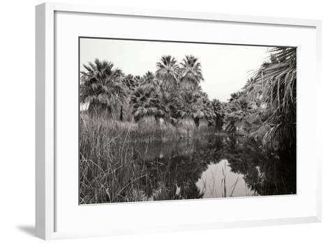 Ancient Palms I-Rita Crane-Framed Art Print