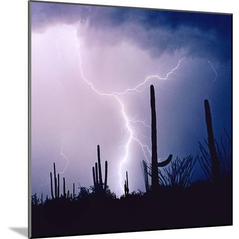 Electric Desert IV-Douglas Taylor-Mounted Photographic Print