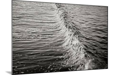 Wave 2-Lee Peterson-Mounted Photographic Print