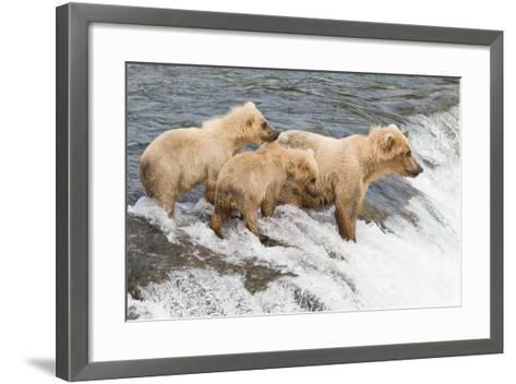 Day at the Falls-Susann Parker-Framed Art Print