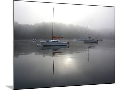 Red Sail-Tammy Putman-Mounted Photographic Print