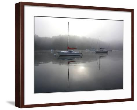 Red Sail-Tammy Putman-Framed Art Print
