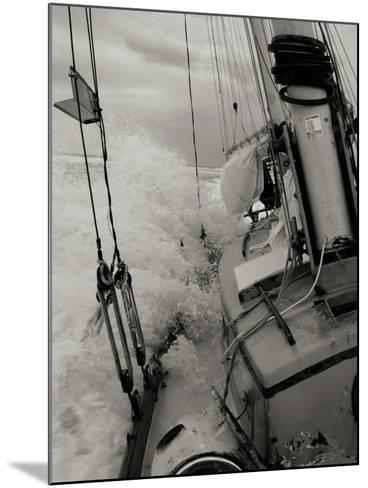 Life at Sea I-Brian Kidd-Mounted Photographic Print