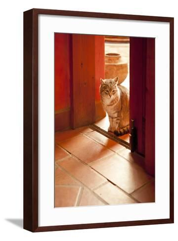 In the Sun-Karyn Millet-Framed Art Print