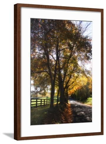 Country Road III-Alan Hausenflock-Framed Art Print