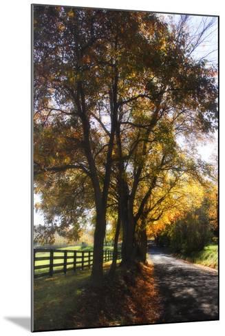 Country Road III-Alan Hausenflock-Mounted Photographic Print