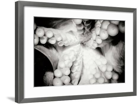 Octopus-Beth Wold-Framed Art Print